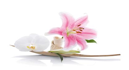Fleurs zuiveren 2